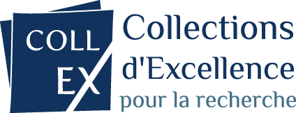 collex logo horizontal couleurs